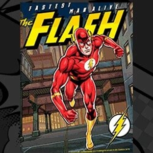 Picture for category The Flash