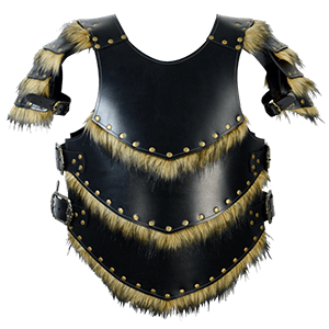 Picture for category Viking Armour