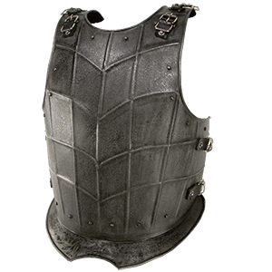 Picture for category Breastplates