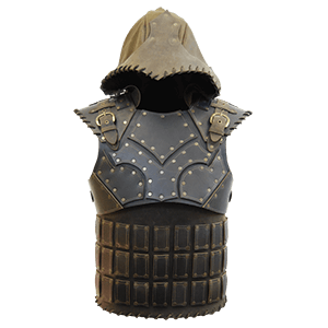 Picture for category Leather Body Armour