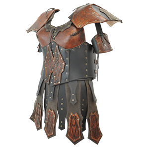 Picture for category Female Leather Armour