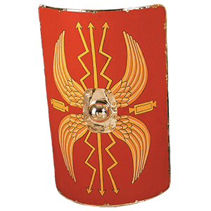 Picture for category Roman Shields
