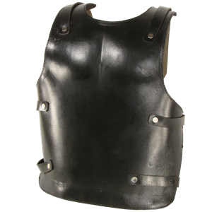 Picture for category Leather Backplates