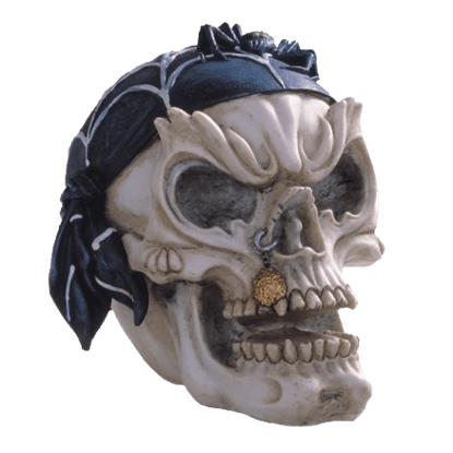 Gothic Pirate Skull