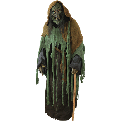 Lady of the Swamp Witch Costume
