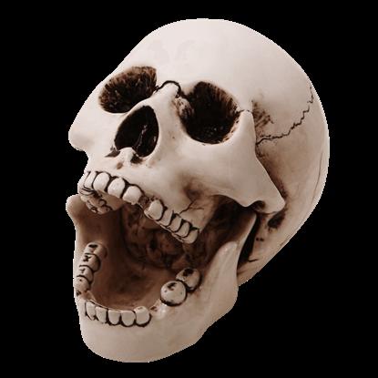 Open Mouth Ceramic Skull Ashtray