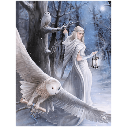 Midnight Messenger Canvas Print by Anne Stokes