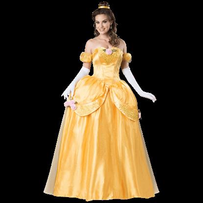 Beautiful Princess Deluxe Adult Costume