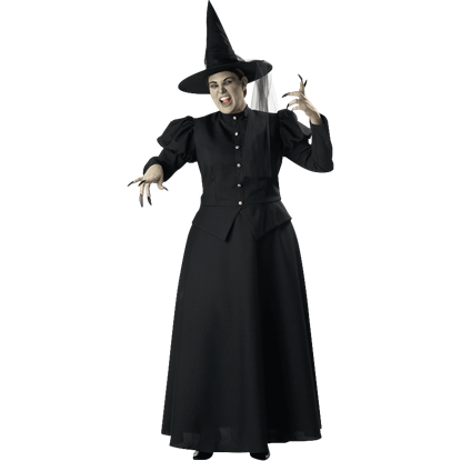 Womens Wicked Witch Plus Size Costume