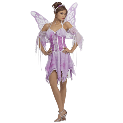 Secret Wishes Ladies Butterfly Pixie Costume