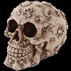 Crossbones Skull Money Bank