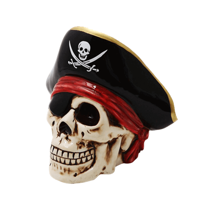 Pirate Captain Skull Bank