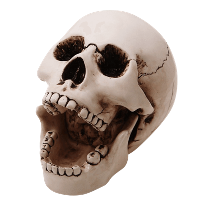 Open Mouth Ceramic Skull Ashtray