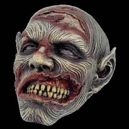 Decayed Zombie Head