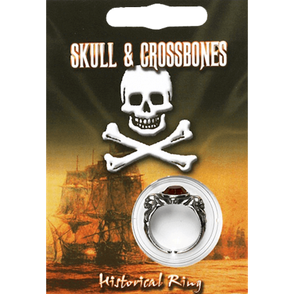 Pewter Pirate Gem Ring