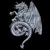 Celtic Dragon Pennant