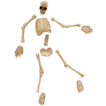 Boneyard Bag-O-Bones - Halloween Village Accessories by Department 56