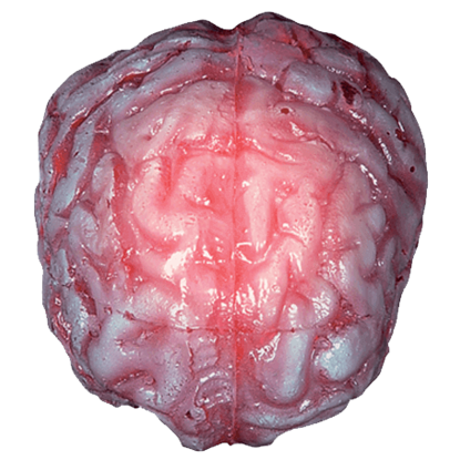 Color Changing Realistic Brain