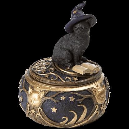 Magical Cat Box