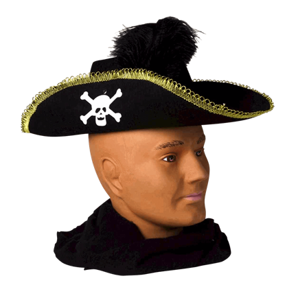 Skull and Feathered Pirate Hat
