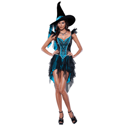 Womens Enchanting Witch Costume