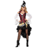 High Seas Treasure Womens Costume