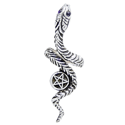 Silver Snake and Pentacle Ring