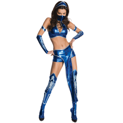 Mortal Kombat Secret Wishes Kitana Costume