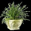 Square Fleur-de-Lis Planter