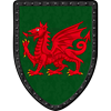 Red Dragon on Green Steel Battle Shield