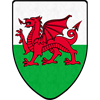 Welsh Dragon Steel Battle Shield