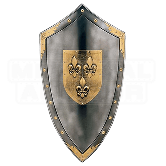 Metallic Duchy of Anjou Shield by Marto