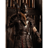Odomar Viking Leather Armour Package