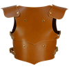 Childrens Lionheart Armour