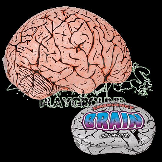 Inflatable Brain