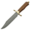 Brass Pinned Damascus Bowie Knife