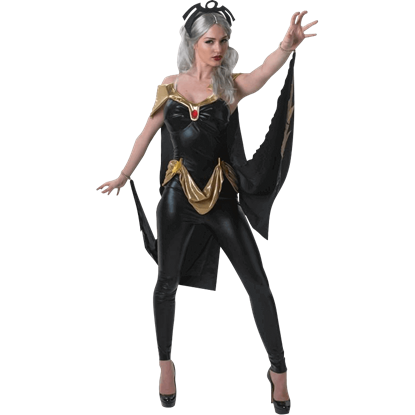 Adult Marvel Storm Costume