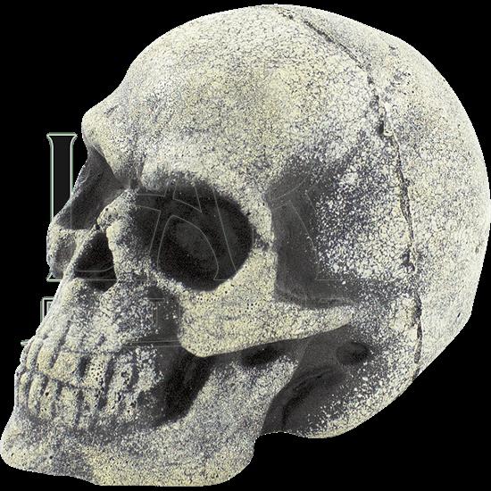 Small Bone LARP Throwing Skull