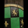 Green Checkered LARP Shield
